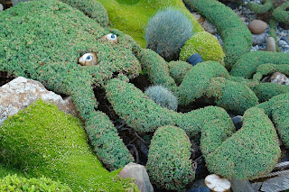 octopus topiary