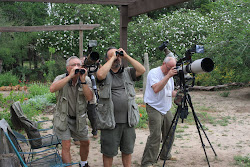 4.11.10 Canadian Bird Watchers get great pictures!