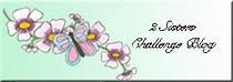 2 Sisters Challenge Blog