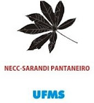 NECC-SARANDI PANTANEIRO