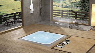 bathroom design with small pond