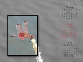 http://mandasmemories.blogspot.com