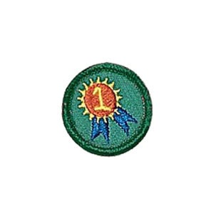 HUNTINGTON BEACH GIRL SCOUT TROOP 746: BEING MY BEST PATCH