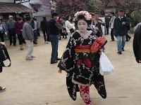 衣装やかんざしも梅の花の舞妓さん