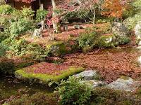 裏の池泉回遊式の庭園は参詣者で混雑