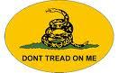 Plainfield Tea Party