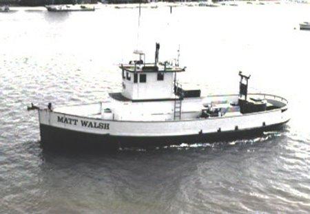 Matt Walsh