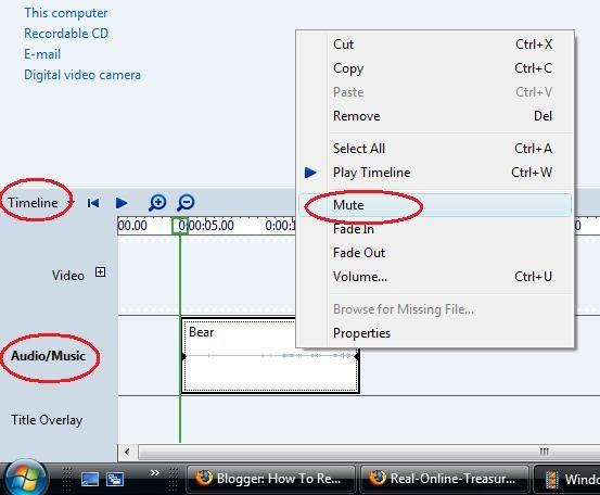 how to resolve how to mute audio of a video clip in vista