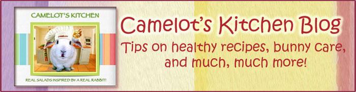 Camelot's Blog