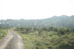 >>>Panorama<<<     Jalan masuk ke Kg. Laboi