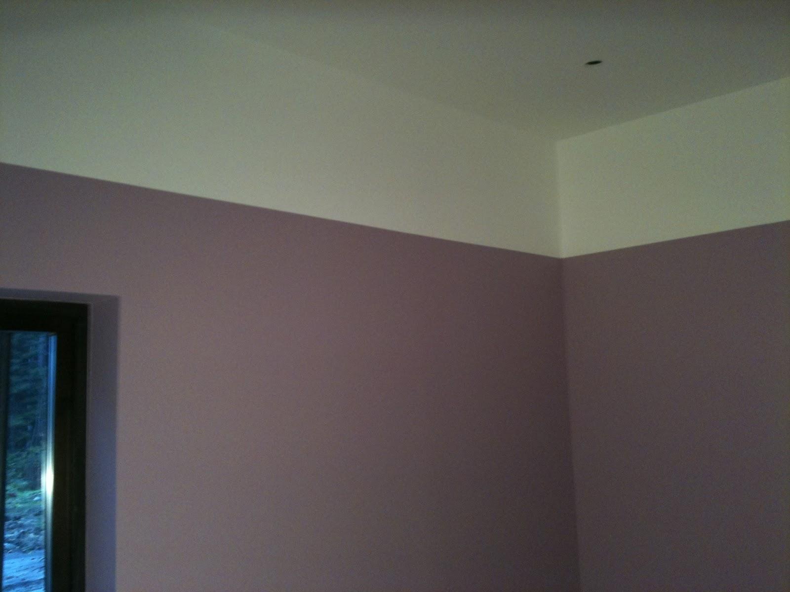 ULLEVIDSDAL: Fototapet, färg och andra framsteg