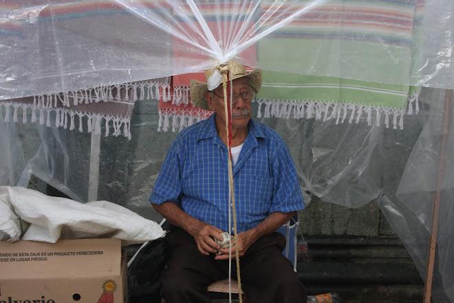 Rug Vendor