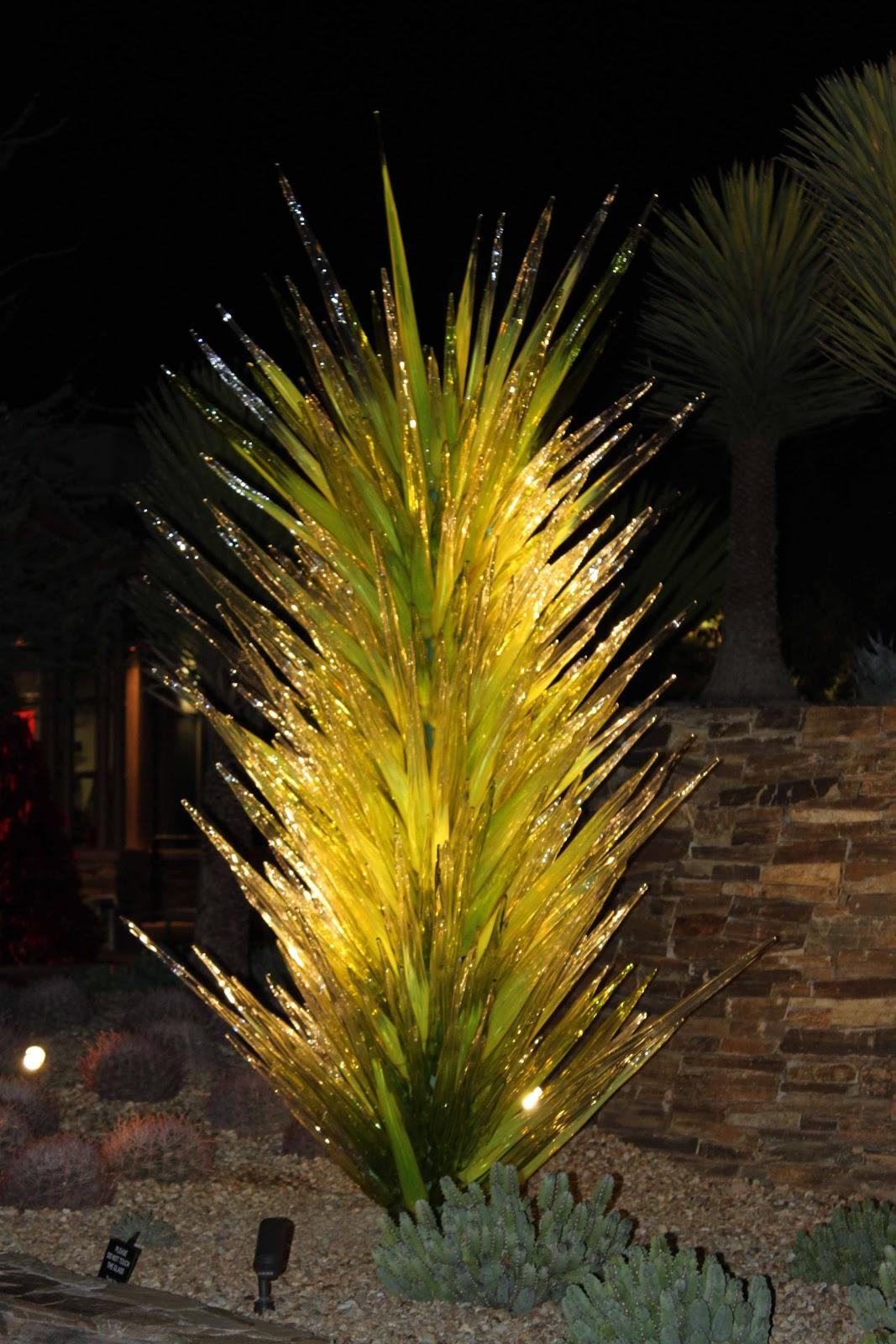 The Turning Of Generations Wordless Wednesday Desert Botanical Garden 39 S Luminarias