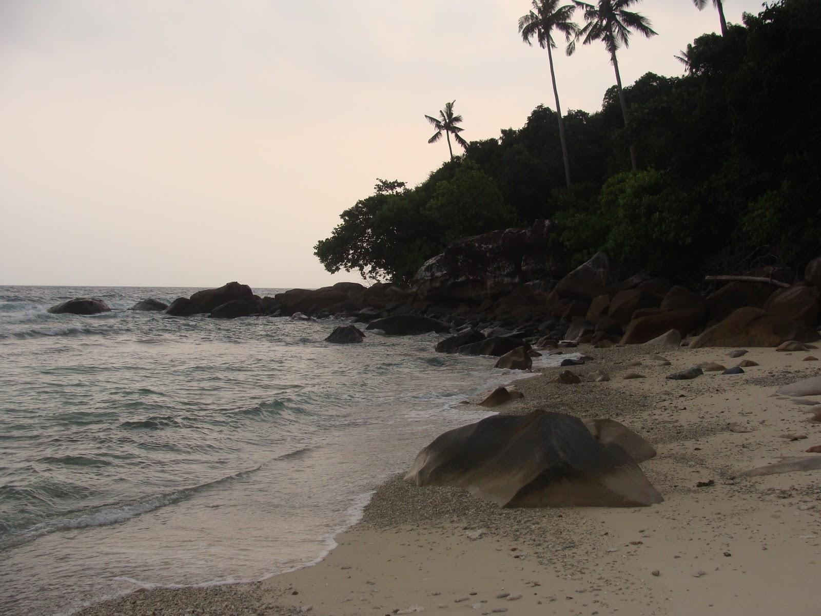 L ultima isola redang quella pi bella parlando di mare mai visto un mare cosi farete il bagno insieme agli squali circondate da milioni di pesci