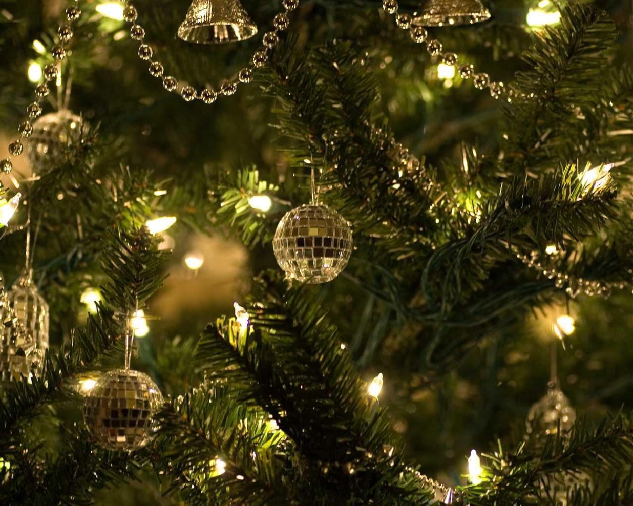David al día: El espíritu de la Navidad también en crisis I