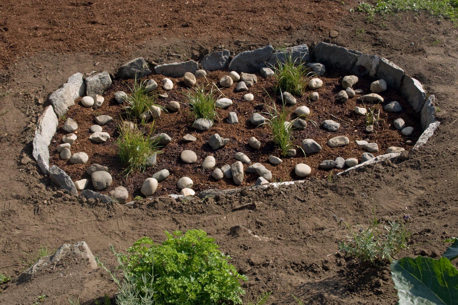 Bellingham Green Design: Rain Garden & native plants
