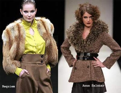 Trends For Winter 2009-2010