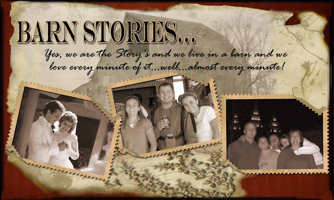 Barn Stories