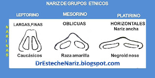 nariz+etnica EXAMEN GENERAL DE NARIZ Y CARA | Rinoplastia | Part 5 | Kosmetische Nasenoperation | Rhinoplasty | parte 5 | General Examination Of The Nose And The Face
