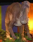 Маязавър Maiasaurus!!!