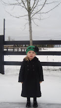 Thanksgiving Day Snow 2010
