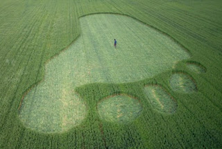 footprint crop circle