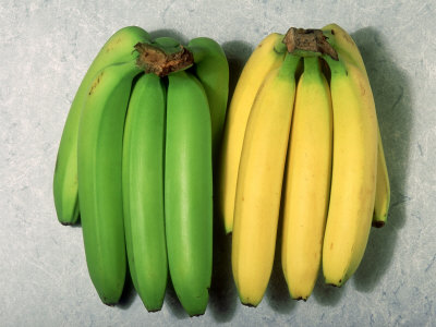 Choosing bananas for steaming
