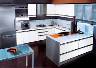 Kitchen Cabinets Designs for Professional Chef