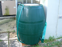 My Edible Yard Rain Barrel