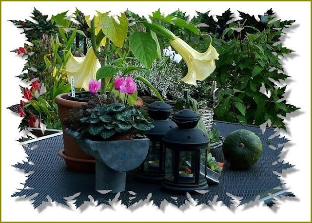 Fuchsienrots Garten - Blog: Ein wenig Herbstdeko auf dem Gartentisch