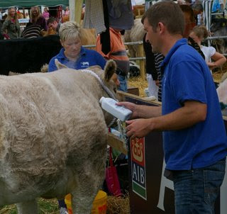 Photographs from Tullamore Show 2009