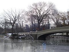 Lago no Central Park
