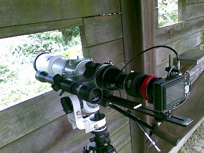 吟遊詩人二號  digiscoping with Leica D-Lux3 , Pentax 75SDHF