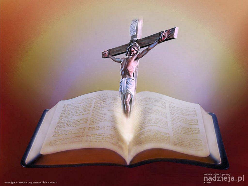 Matrimonio Biblia Catolica : MÊs da biblia grupo de coroinhas