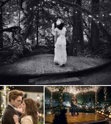 twilight wedding under the lights