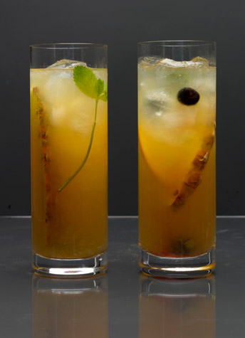 Diary of a Real Zombie: Zombie: The Drink Recipe