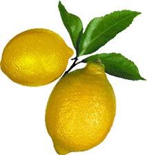rüyada+limon+görmek+ne+demek