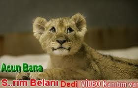 acun+aslan+yavrusu+küfür