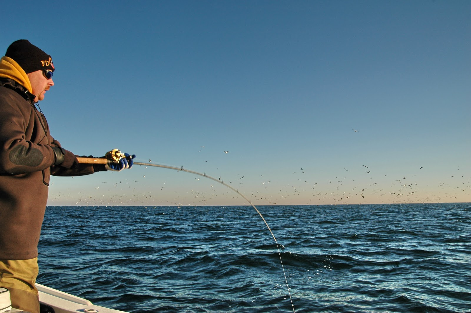 Afw hi seas blog jigs shads for fall stripers for Hi seas fishing line