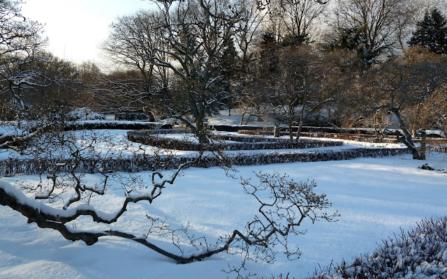 Magnolia Plaza, Brooklyn Botanic in snow