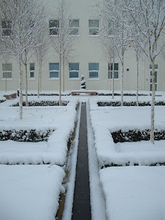 The snow covered garden in my building