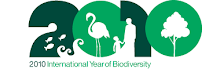 año de la biodiversidad