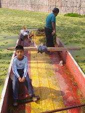 Defendamos Canal Nacional