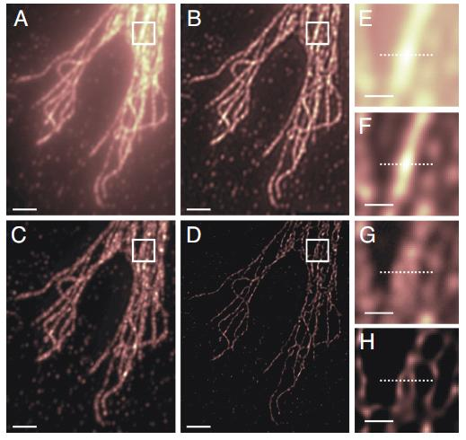 biophotonics research papers Journal of biophotonics an integrated multimodal optical microscope is demon-strated for high-resolution biomaterials for both basic research and clinical.