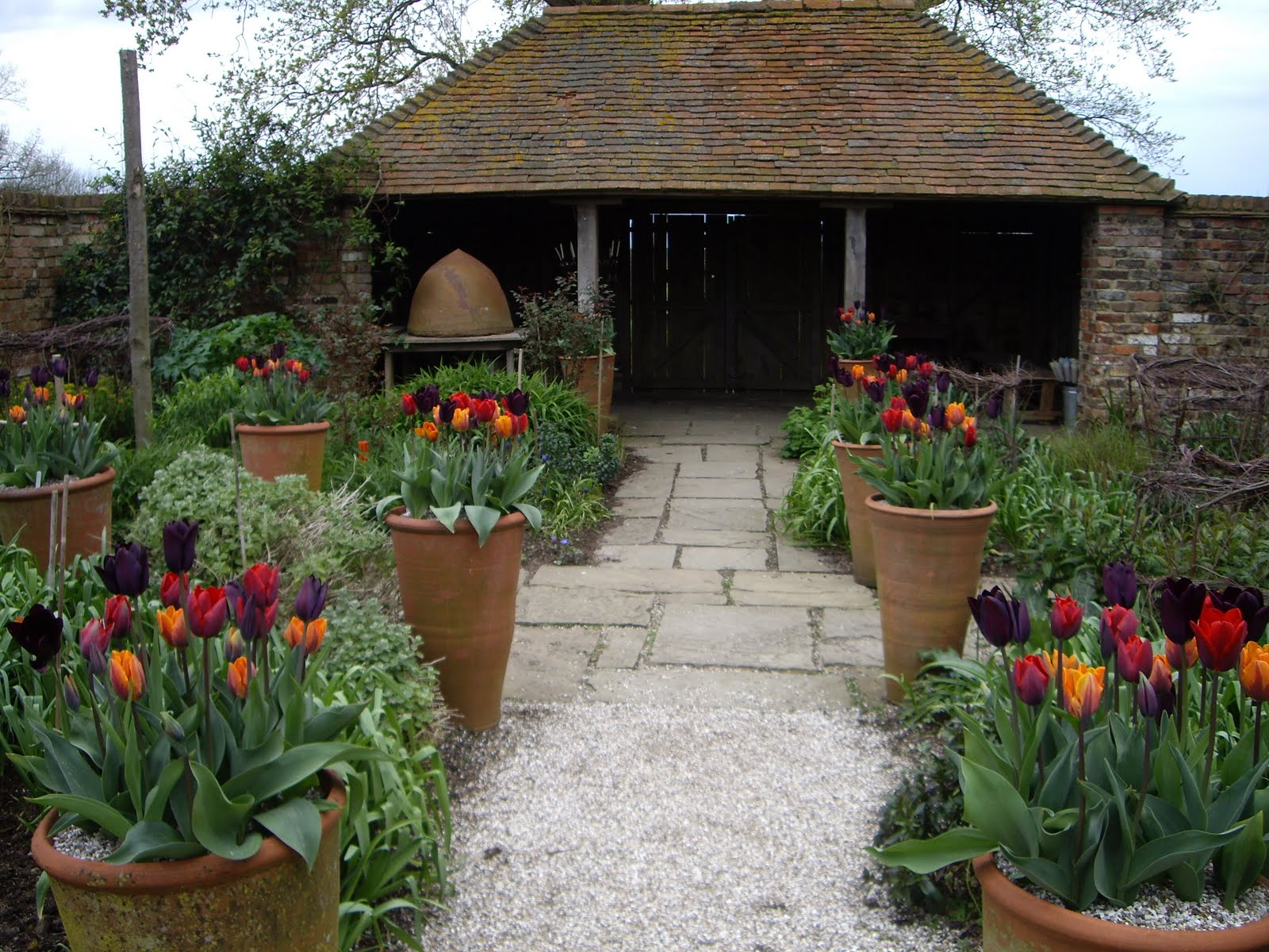 Pinterest the world s catalog of ideas for Spring hill nursery garden designs