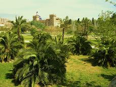 Jardin del Turia y el museo de BBAA de Valencia