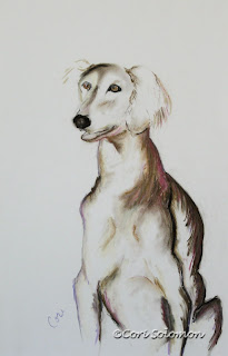 Saluki - Sitting Pretty By Cori Solomon