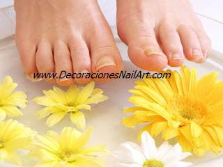 El cuidado de Manos y pies El cuidado de Manos y pies pies3