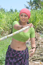 Filim Actress Hot Photos