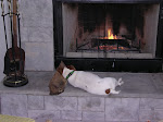 Our Jack Russell -a favorite spot.